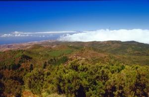 Naturschutzgebiet Garajonay, La Gomera